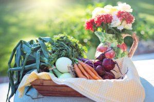 Essen für Mutter und Baby - Biologisch vs. konventionell hergestellt